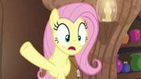 "Fluttershy ""Zecora, you didn't rhyme!"" S7E20"