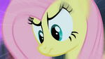 Fluttershy and The Stare S01E17