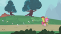 Pinkie Pie leading parasprites out of Ponyville S1E10.png