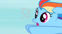 Rainbow Dash Owlowiscious 4 S02E07