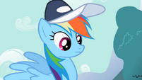 Rainbow Dash considering what Fluttershy said S2E7