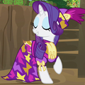 Rarity fancy camo ID S2E21