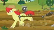 S07E13 Bright Mac i Burnt Oak ścigają się podczas orania pola