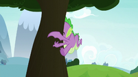 Spike slams into a tree S8E24