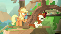 "Applejack ""wouldn't be a friendship quest"" S8E23"