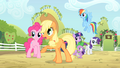 Applejack 'Have you lost your pest-lovin' mind' S4E07.png