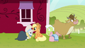 Applejack puts wig and bonnet on Rarity S7E19.png