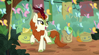 Autumn Blaze singing happily S8E23