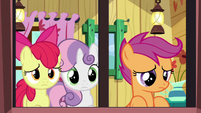 Cutie Mark Crusader look out the window S8E12