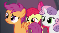 Cutie Mark Crusaders look at the Hippogriffs S8E6