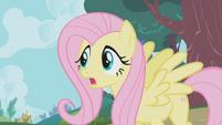 "Fluttershy ""Applejack, Winona, stop!"" S1E04"