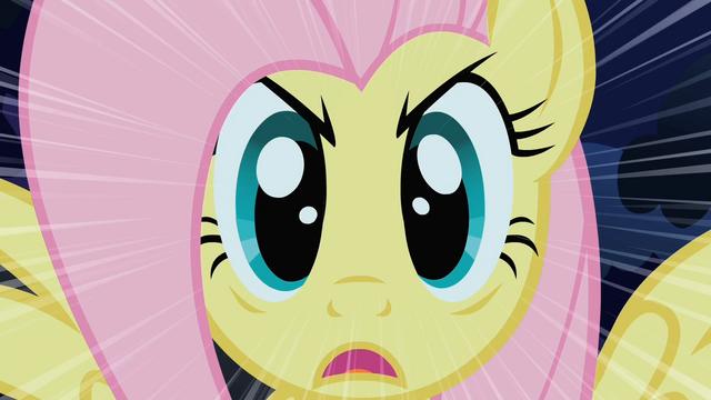 File:Fluttershy Stare S01E17.png
