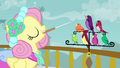 Fluttershy and Birds S2E26.png