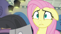 Fluttershy confused about thread count S8E4