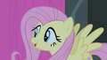 Fluttershy sings 'Oh' S4E14.png