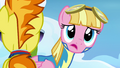 Pink pegasus looking past Spitfire S3E7.png