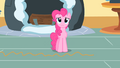 Pinkie Pie 'but what are the chances' S1E25.png
