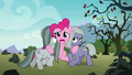 Pinkie Pie sadly holding her sisters S8E3.png
