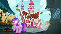 Ponyville ponies hear Pinkie Pie's outburst S7E11