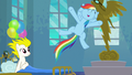 "Rainbow Dash ""here you all are doin' it!"" S6E7.png"