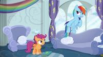 Rainbow Dash --obviously!-- S6E14