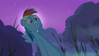 Rainbow Dash -And then- S3E6