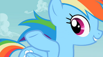 Rainbow Dash flowing mane S2E8