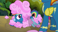 Rainbow looks up at Spitfire again S6E7