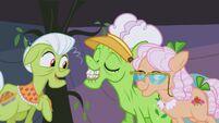 S03E08 Ciocia Applesauce prezentuje swoje nowe zęby