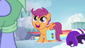 "Scootaloo ""nopony inspires me more than she does!"" S7E7.png"