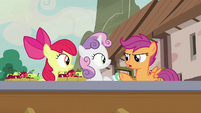 "Scootaloo ""that's... not important"" S7E8"