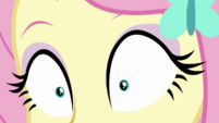 Close-up on Fluttershy's eyes CYOE2a