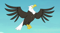 Eagle flying through the sky S8E6
