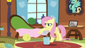 Fluttershy cleaning up Zephyr's mess S6E11.png
