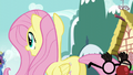 Fluttershy trying to find an albino squirrel supposedly around her S5E19.png