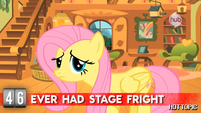 """Hot Minute with Fluttershy """"yes, right now"""""""