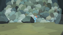Rainbow Dash comes out from behind boulder S2E07