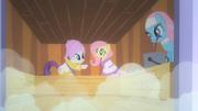 Rarity conversando com Fluttershy na sauna T1E20