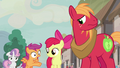 Scootaloo surprised by Feather's successful pickup lines S7E8.png