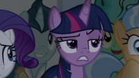 Twilight annoyed to see Flim and Flam again S8E16