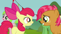 Apple Bloom and Babs Seed meets again S3E08