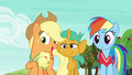 "Applejack ""you two are really good at this game"" S6E18.png"