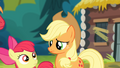 Applejack and Apple Bloom looking at each other S4E09.png