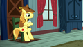 Braeburn watching diligently S5E6.png