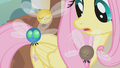 Fluttershy with three parasprites S1E10.png
