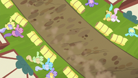 Overhead shot of singing crowd of ponies S6E14