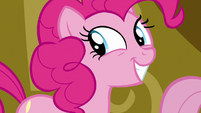 Pinkie Pie grinning at Twilight Sparkle S7E14