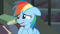 Rainbow Dash 'we really love your books' S4E04