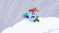 Rainbow and Tank inside the snow S5E5
