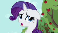 Rarity --Applejack and I haven't-- S6E10